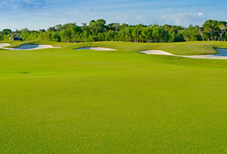 golf-course-hickory-hills